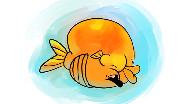 swim bladder disease
