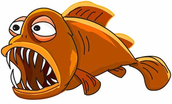 do goldfish have teeth
