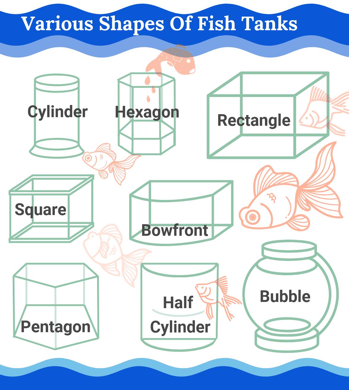 aquarium fish tank size infographic